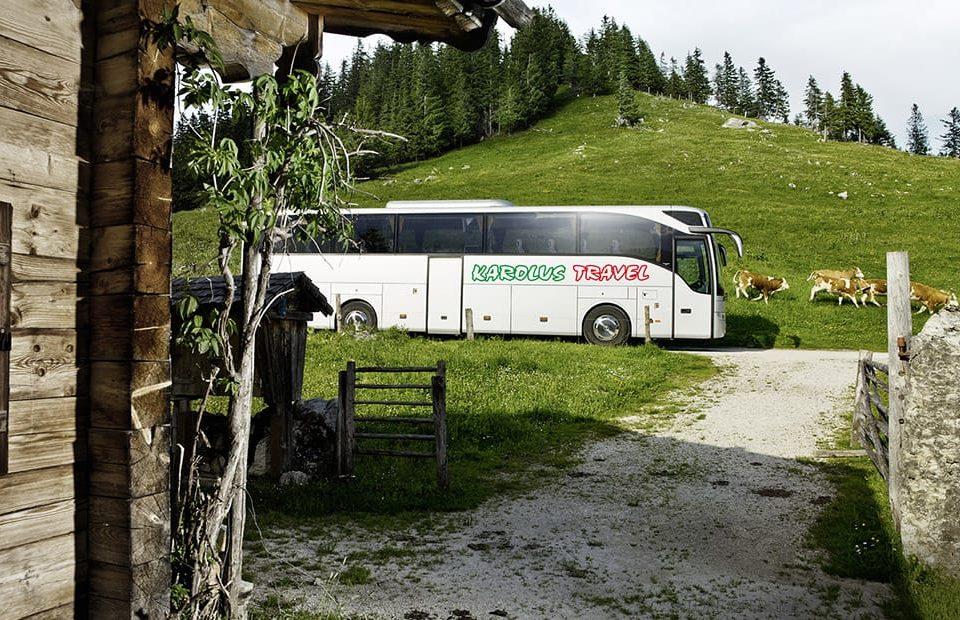 busy-jelenia-gora